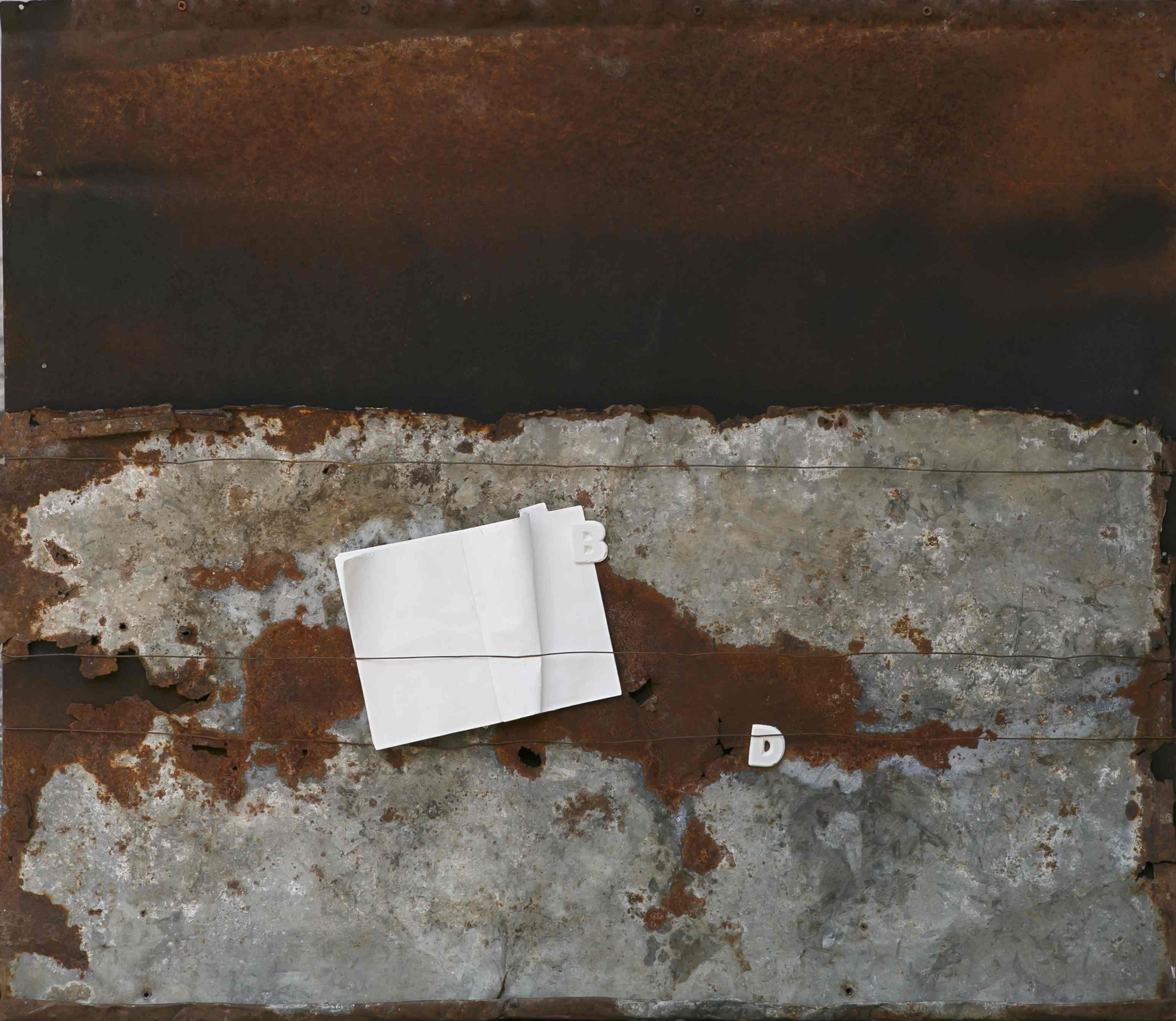 L'ordito della memoria, ferro corroso, libro, gesso, 95x81, 2014